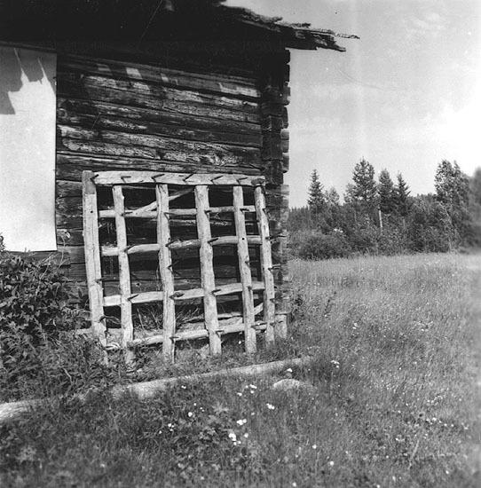Vbm_A 19491.jpg