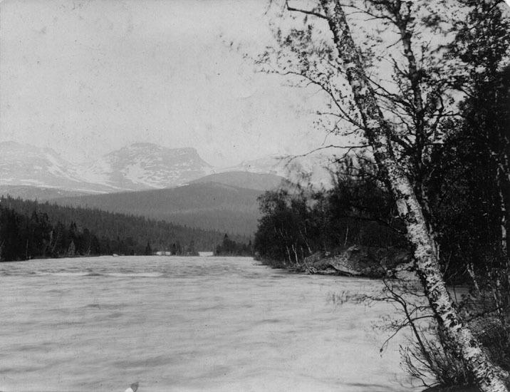 Vbm_BR 19260.jpg
