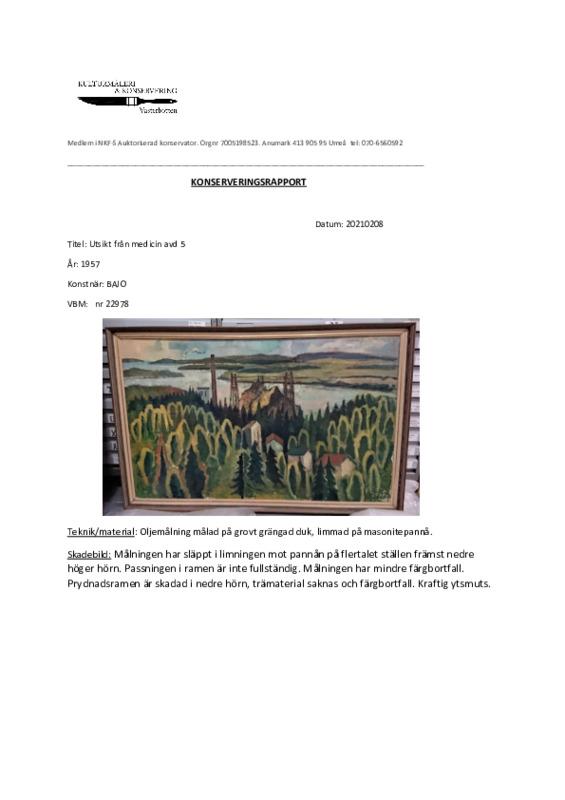 konserveringsrapport Bajo vbm 22978.pdf