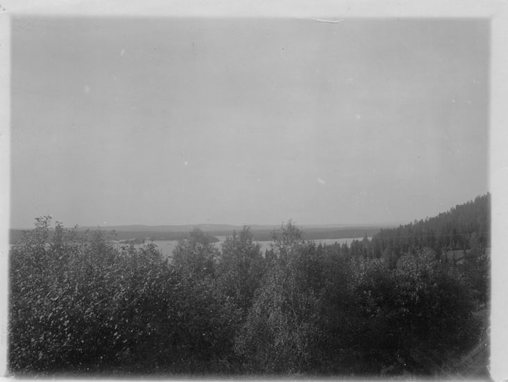 Vbm_BR 19272.jpg