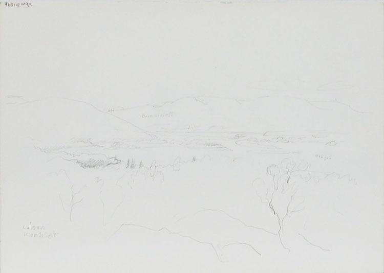 DF 31154b.jpg