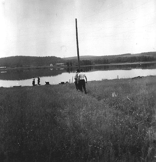 Vbm_A 19463.jpg