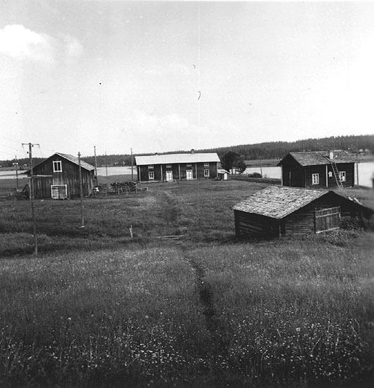 Vbm_A 19468.jpg