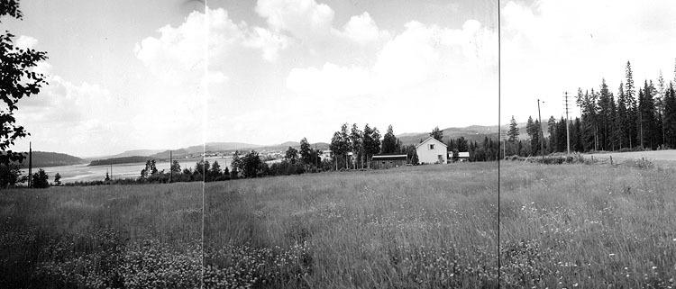 Vbm_A 19124.jpg