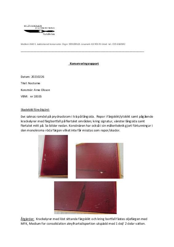 konserveringsrapport vbm 18335 a olsson.pdf