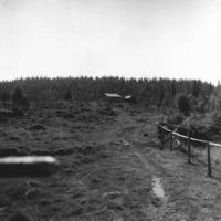 Vbm_A 19473.jpg