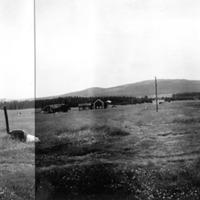 Vbm_A 19232.jpg