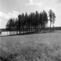 Vbm_A 18746.jpg