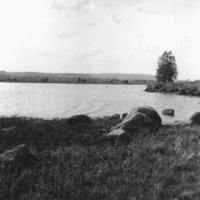 Vbm_A 19462.jpg