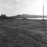 Vbm_A 19460.jpg